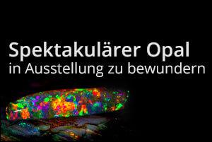 Spektakulärer Opal in Ausstellung zu bewundern