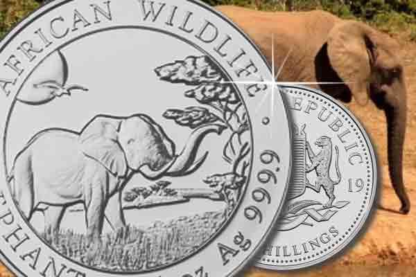 5 oz Somalia Elephant Silber 2019