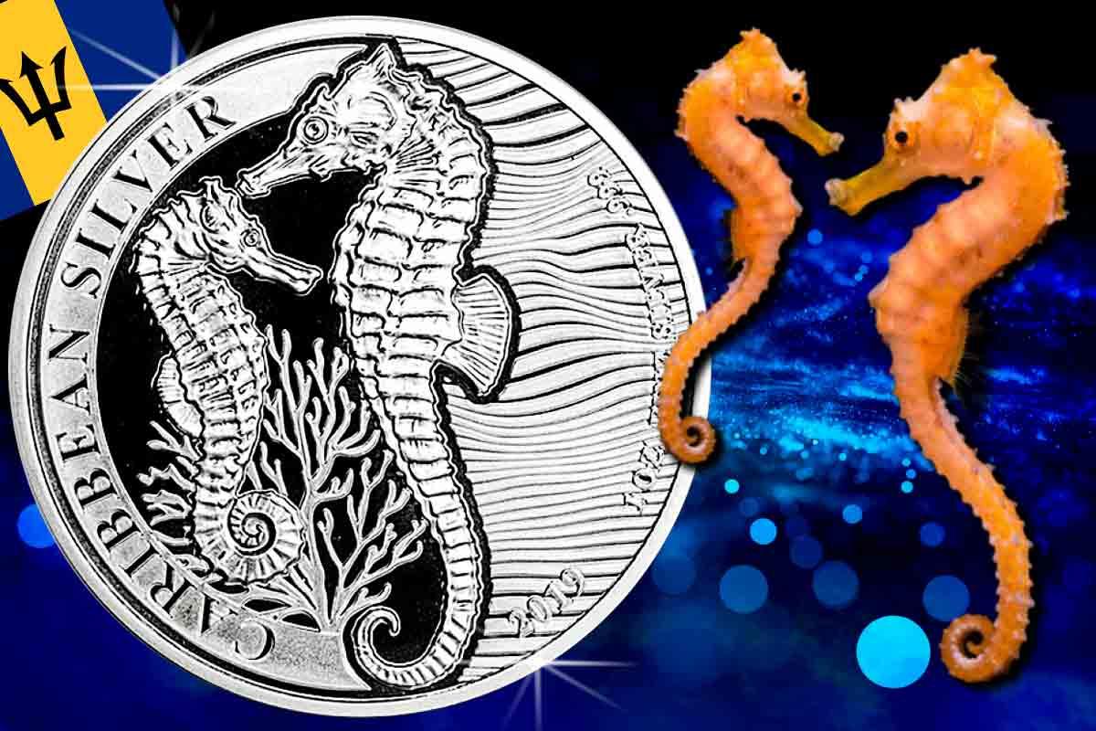 Jetzt hier: Barbados Seahorse Silber 2019