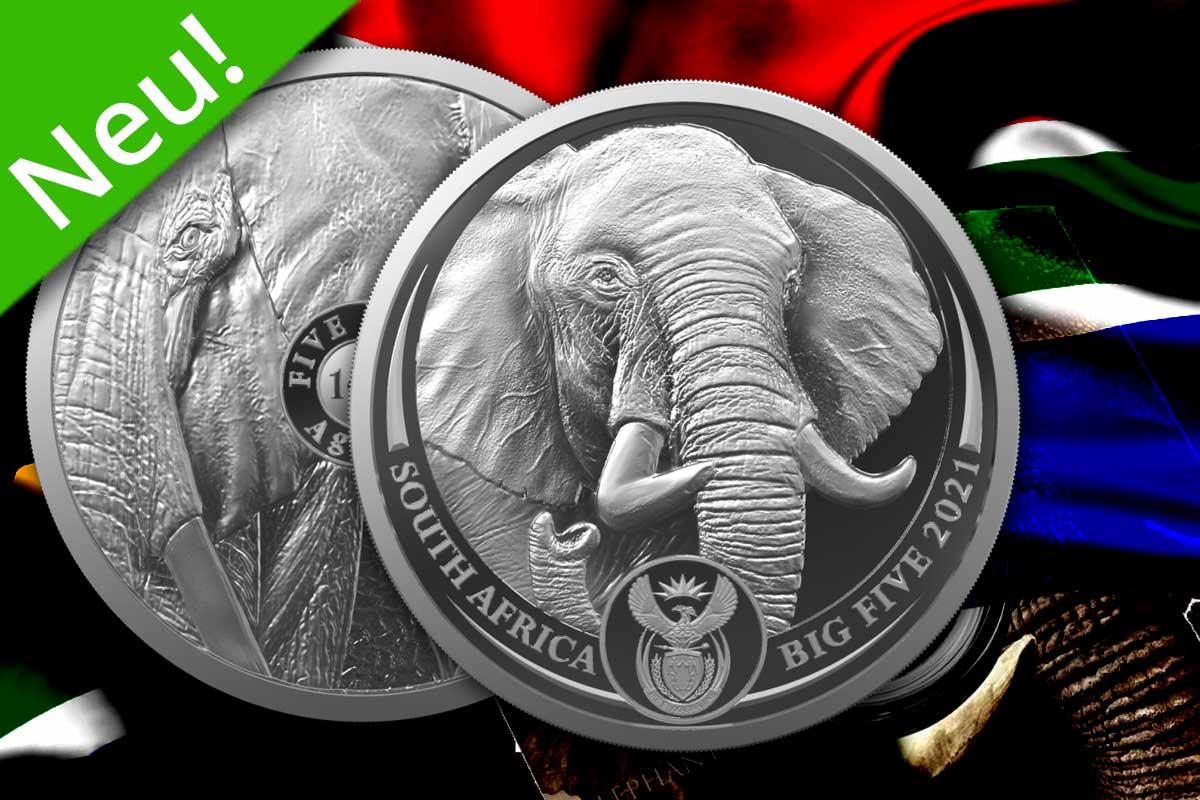 Big Five Serie II 2021: 1. Motiv Elephant