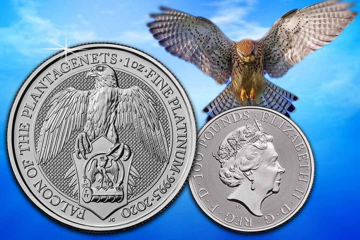 Falcon of the Plantagenets - Jetzt als 1 oz Platinmünze