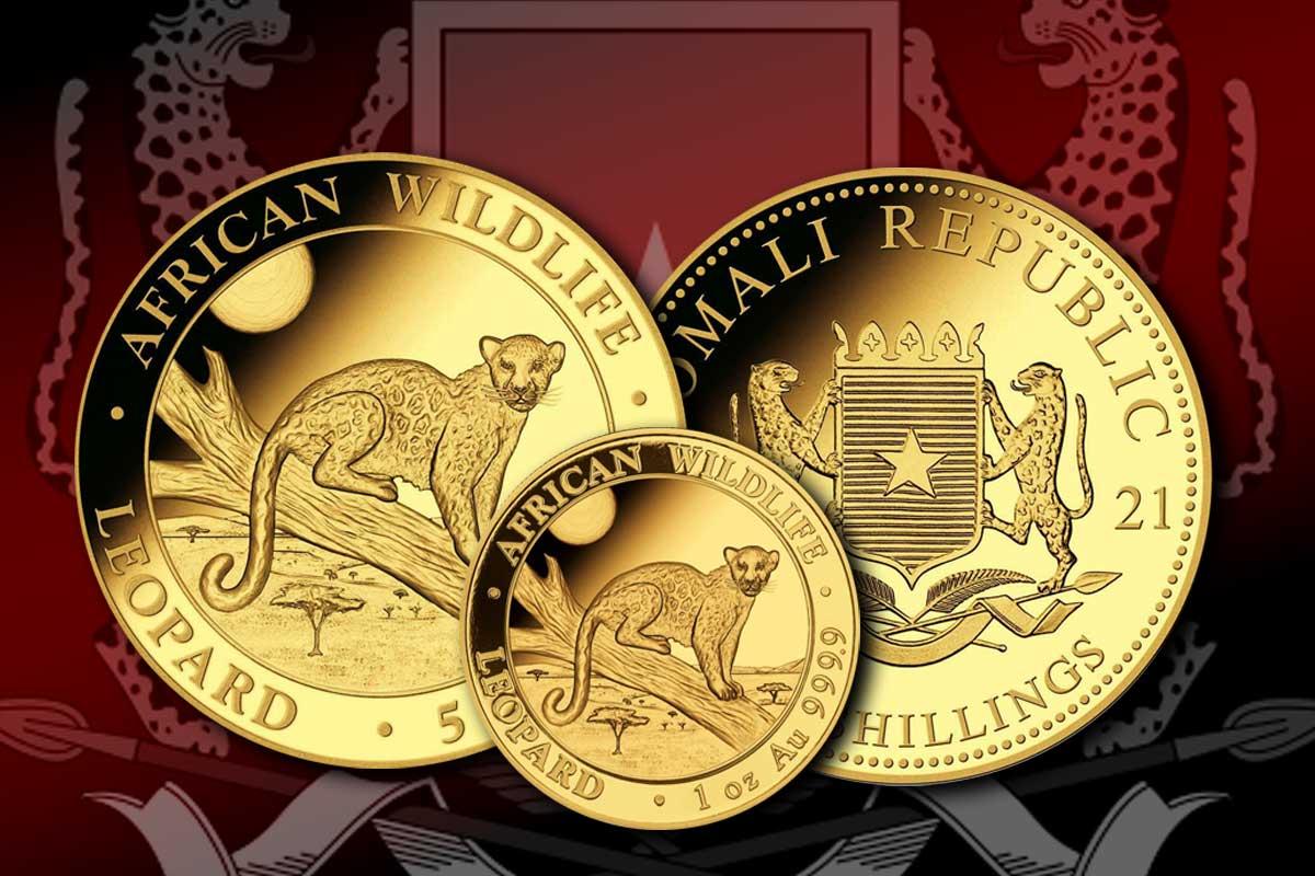 Goldmünze Somalia Leopard 2021 - Jetzt erhältlich!