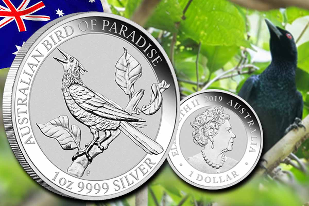 Neu! Birds of Paradise Silber 2019