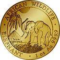 Somalia Elefant Motiv 2017