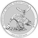 Wedge-Tailed Eagle Motiv 2018