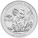 Koala Motiv 2017