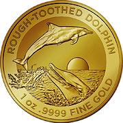 Dolphin RAM Goldmünze