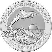 Dolphin RAM Silbermünze