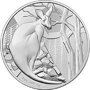 Känguru Silbermünze