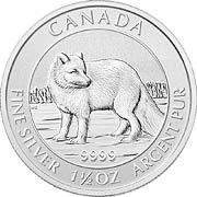 Polarfuchs Kanada Silbermünze