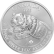 Predator Serie Silbermünze
