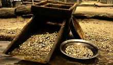 Goldrausch Glossar