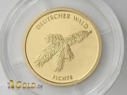 Fichte 2012 Gold Detailaufnahme