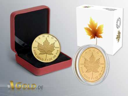 Maple Leaf 2016 - 999,99 Gold 1 oz Shipper