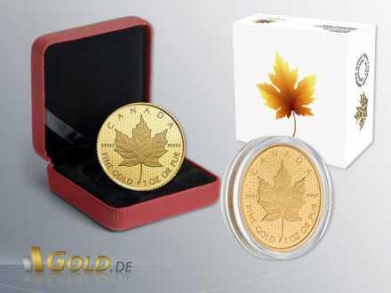 Maple Leaf 2016 - 999,99 Gold 1 oz Shipper