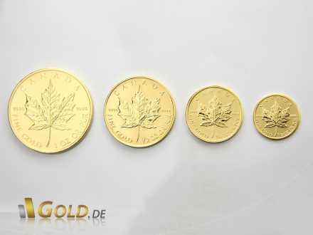 Maple Leaf Gold in den Stückelungen 1 oz, 1/2 oz, 1/4 oz und 1/10 oz
