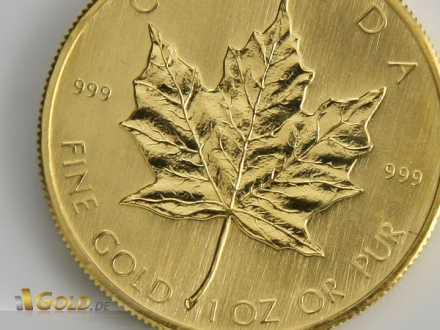 Maple Leaf Detailansicht