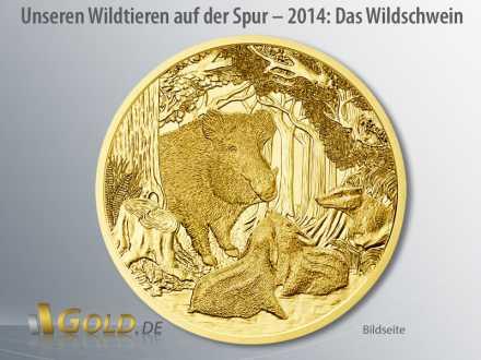 Wildtiere Österreich in Gold 2014: Das Wildschwein (Bildseite)