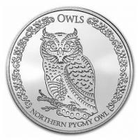 Sperlingskauz - Northern Pygmy Owl 2. Ausgabe